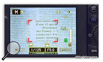 Экранная лупа в режиме ручной фокусировки камеры Nikon Coolpix P7700.
